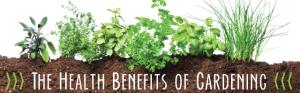 newsletter-health-benefits-gardening