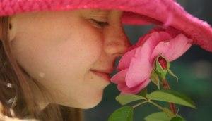 scented-garden
