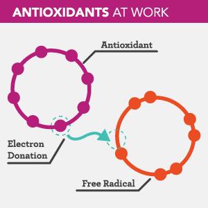 WhatDoAntioxidantsDo_300x300